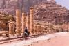 Donkey transportation along the Cardo Maximus in Petra, Hashemite Kingdom of Jordan.