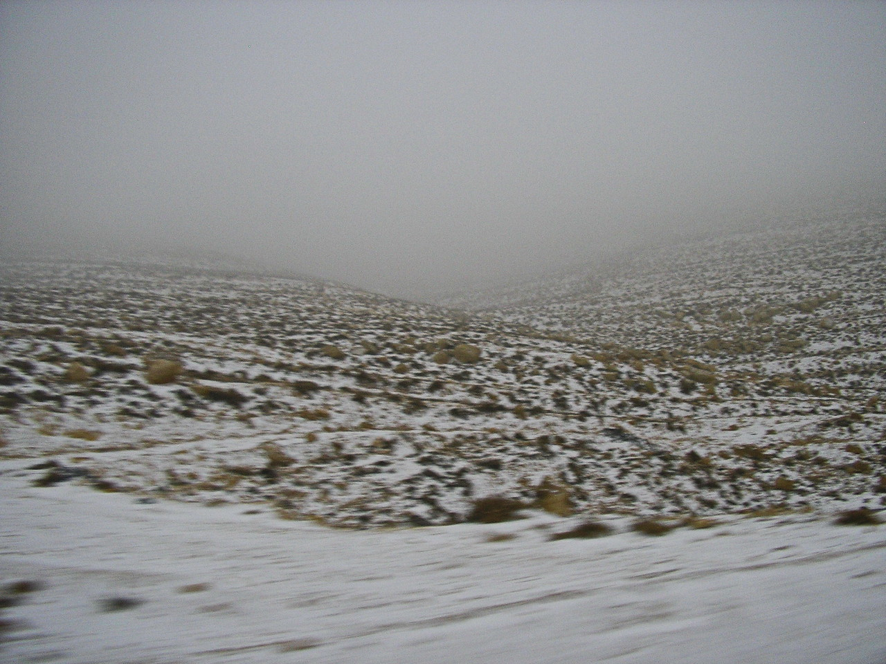 Sudden Snow Storm