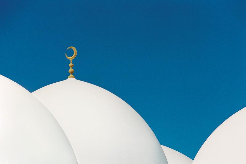 White Mosque Domes, Hama