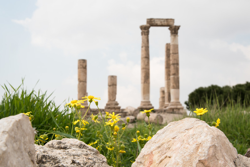 Temple of Hercules, The Citadel, Amman Jordan