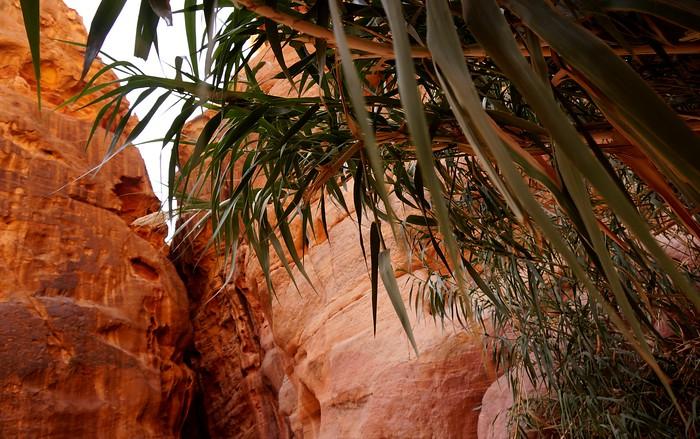 The Siq, Petra, Jordan.