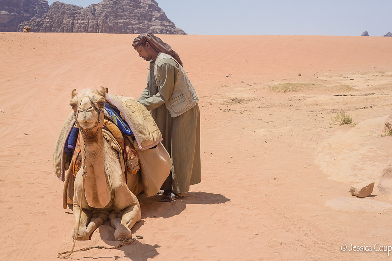 Packing the Camel