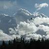 2/9/09...pictures 1 to 50 taken with new Tamron 28-300 VC lens...<br /> <br /> Note...jet engine falling from the sky..
