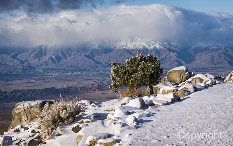 Keys View Joshua Tree view to Mount San Jacinto