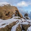 Arch Rock in Snow Joshua Tree