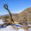 Keys View in Snow. Joshua Tree National Park
