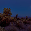20130622_Joshua Tree Super Moon_0018