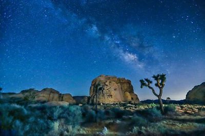 Cyclops Rock in Joshua Tree N.P. with the Milky Way above.