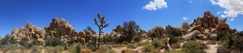 Seven image stitch of rocks on the Hidden Valley Nature Trail area.