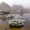 Barker Dam in Snow Joshua Tree National Park