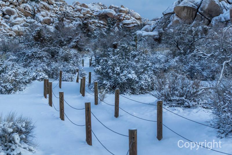 Barker Dam Trail head in Snow, Joshua Tree