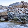 Barker Dam in Snow. Joshua Tree National Park
