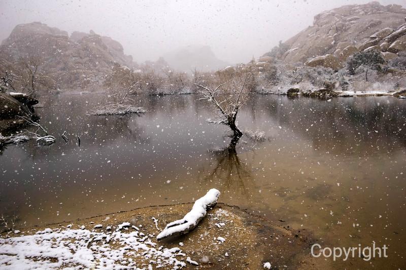 Barker Dam Snowstorm Joshua Tree National Park