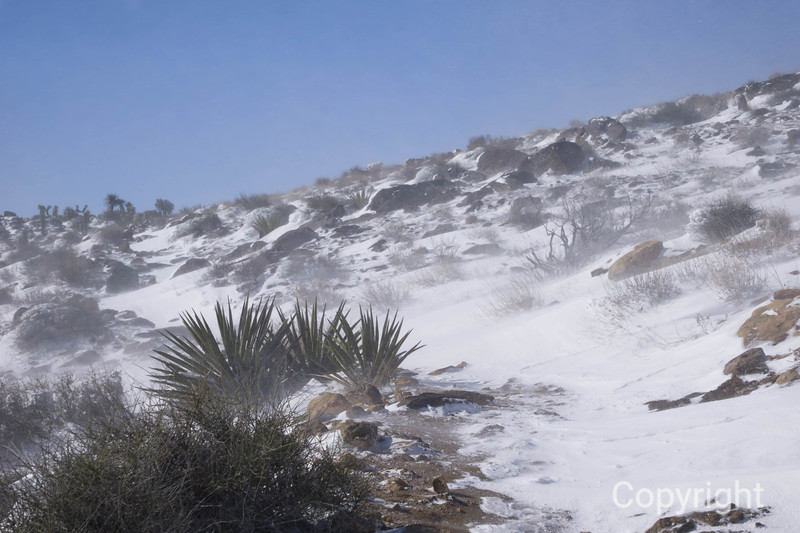 Blowing Snow, Ryan Mountain Trail, Joshua Tree