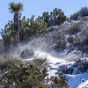 Blowing snow, Ryan Mountain Trail Joshua Tree