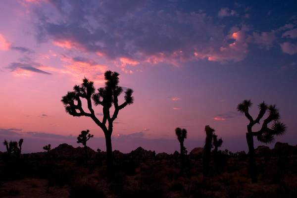 Smoke, clouds and colors, Joshua Tree National Park.