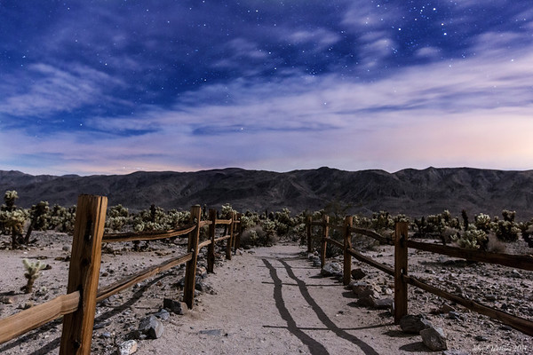 Desert Trails to the Stars No. 2