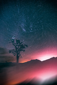 Star Vacuum (Joshua Tree CA)