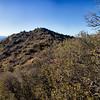 Eureka Peak, Joshua Tree National Park, California