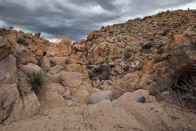 Mastodon Peak Trail, Joshua Tree National Park, California