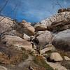 Barker Dam Trail, Joshua Tree National Park, California