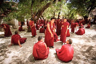10 Years Ago  June 7, 2005 - Sera Monastery - Monks debating