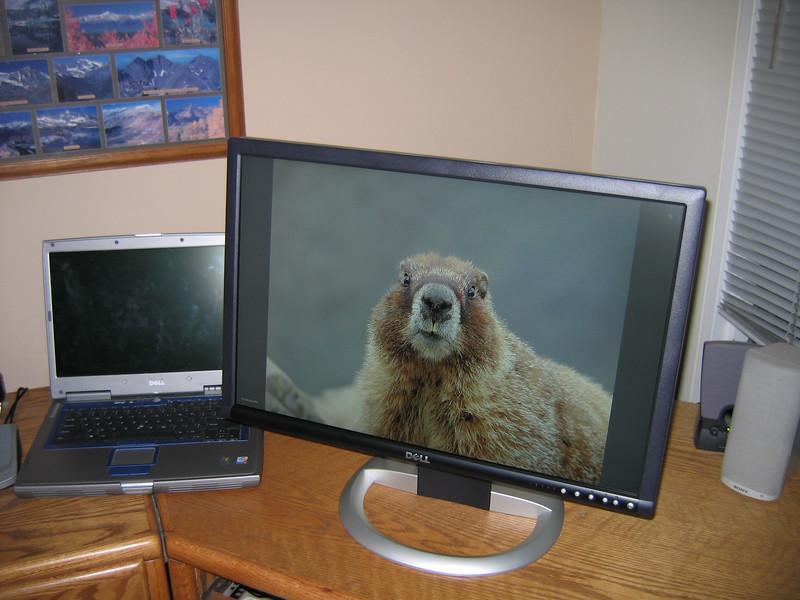 New Flat Screen Monitor