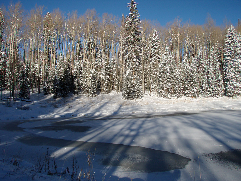 Beaver Pond after the storm