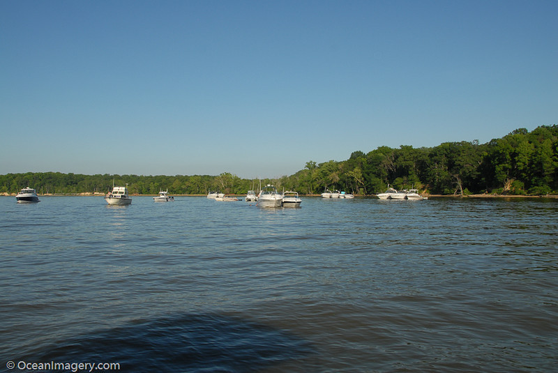 A really nice weekend for boating!