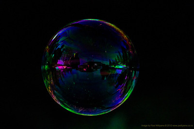 One bubble