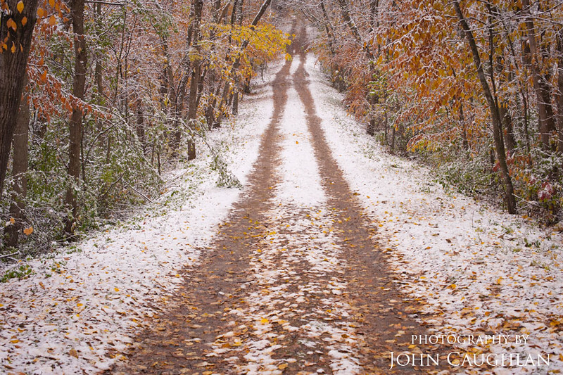 I drove over 2,000 miles this year chasing fall colors. The window to get the perfect shots with the perfect conditions is so small. This morning there was a light coating of snow of the freshly fallen leaves.