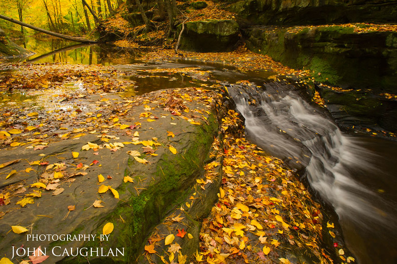 I drove down to Baraboo Wisconsin and photographed this creek.  This natural gorge was cut by a small stream called Skillet Creek. The maples were peaking and many of the leaves covered the walls and floor of the gorge.