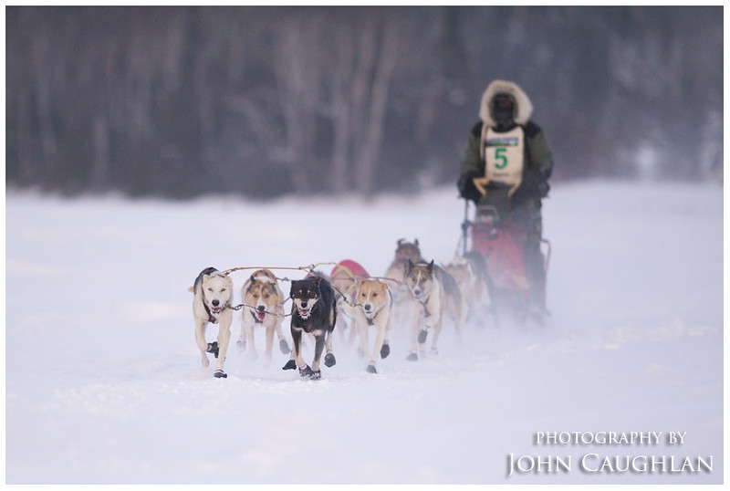 After warming up a bit, I drove to Devil's Track Lake and photographed the dog sledders participating in the Gitchegumee Express dog sled race. It was -28 with a windchill near -50.