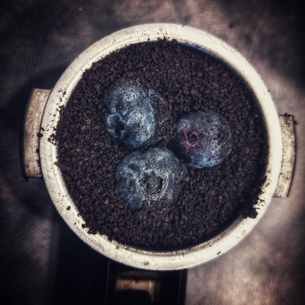 After a #blueberry escape into my #coffee #beans, I thought I would try something different. #blueberry #expresso