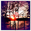 11/28/10 - Walden Pond Sunset