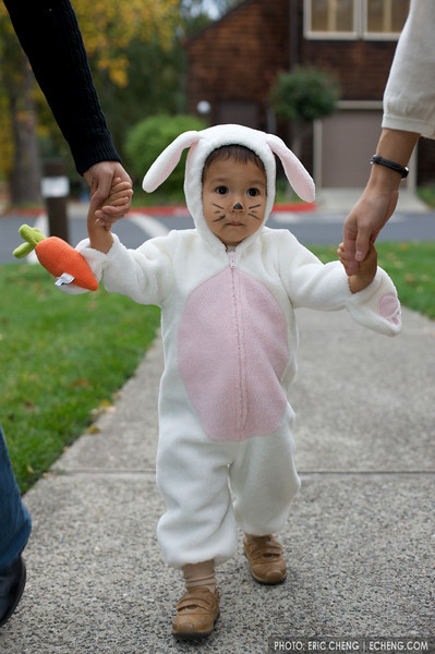 Jack, dressed up as a bunny, Halloween