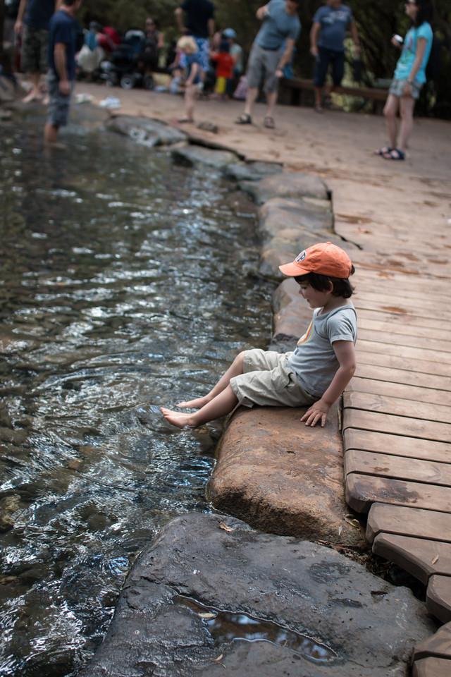 Chilling at Tel Dan reserve