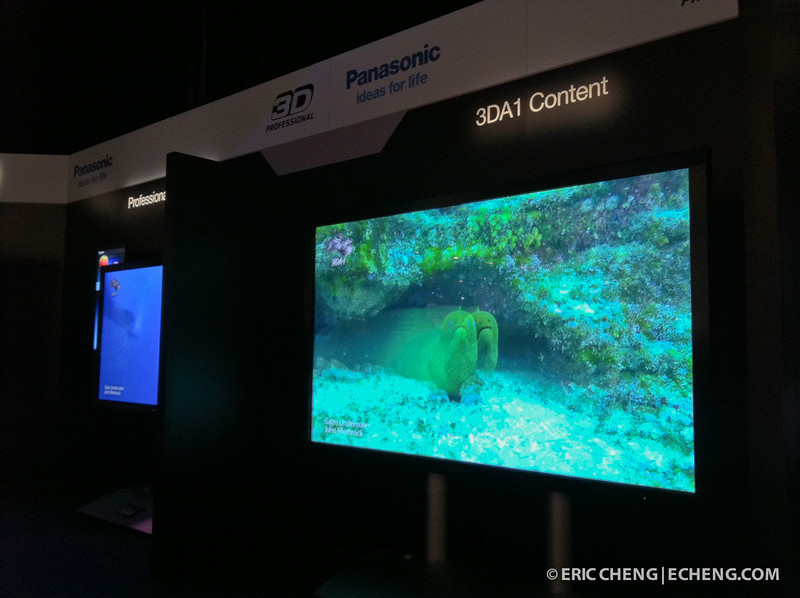 John Ellerbrock's 3D footage from the Panasonic 3DA1 in a Gates underwater housing was in the demo loop