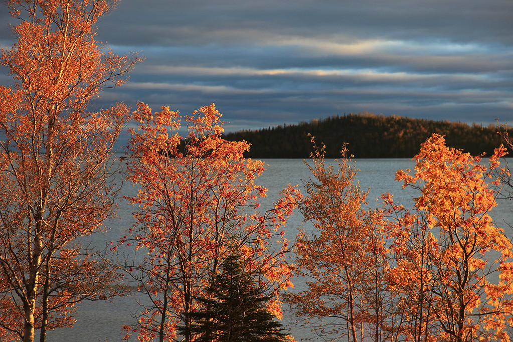 "SUNDAY, OCTOBER 25, 2009<br /> <br /> AUTUMN 9154<br /> <br /> ""Fall colors on Grand Portage Bay""<br /> <br /> Camera: Canon EOS 5D Mark II<br /> Lens: Canon EF 24-105mm<br /> Focal length: 95mm<br /> Shutter speed: 1/160<br /> Aperture: f/5.6<br /> ISO: 200"