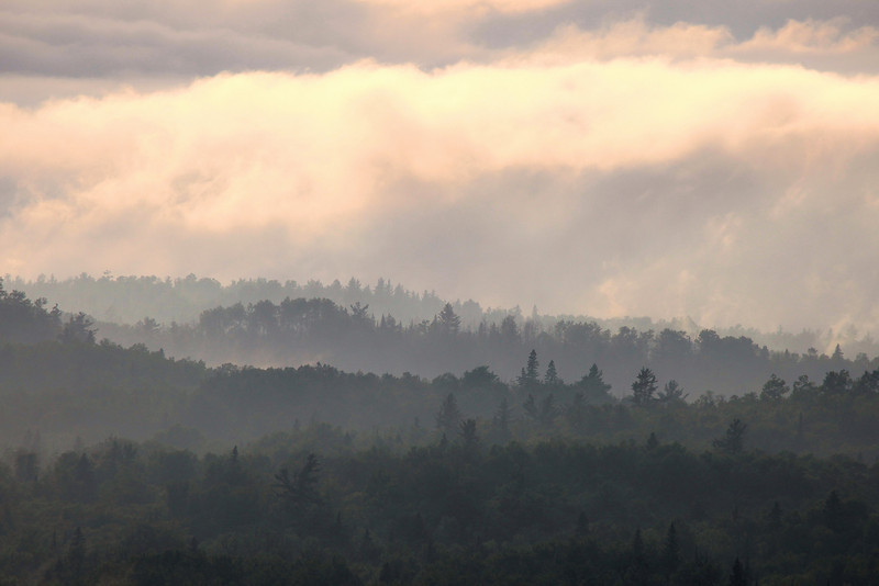 "SATURDAY, JUNE 12, 2010<br /> <br /> FOREST 9317<br /> <br /> ""Misty Mountains""<br /> <br /> This was about an hour before sunset; the clouds were breaking up and the hills had this beautiful fog rolling through through them. I love not only shooting but just plain being out in the woods when the conditions are like this!<br /> <br /> Camera: Canon EOS 5D Mark II<br /> Lens: Canon EF 100-400mm<br /> Focal length: 400mm<br /> Shutter speed: 1/1250<br /> Aperture: f/11<br /> ISO: 400"