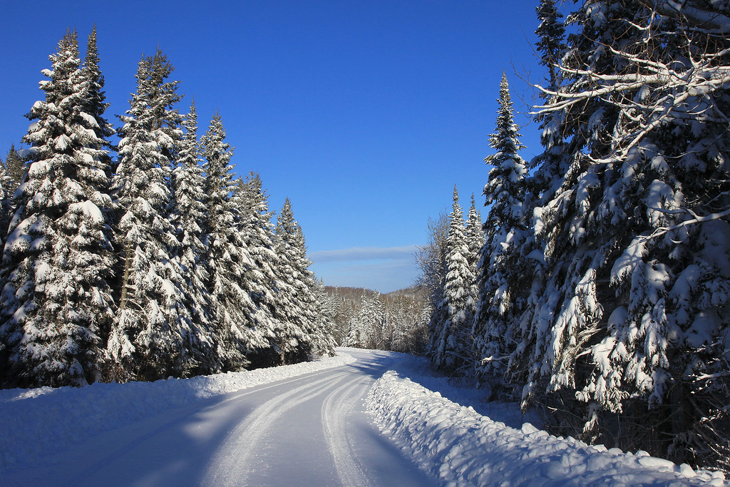 "FRIDAY, NOVEMBER 26, 2010<br /> <br /> FOREST 3308<br /> <br /> ""Early winter wonderland along Old Highway 61""<br /> <br /> Several November storms meant a lot of early snow accumulation inland from Lake Superior near Grand Portage, MN. This photo was taken on November 25, 2010. I was a bit disappointed that these storms left little snow in my yard. I live right on the shores of Lake Superior and early winter storms often mean that rain falls along the shoreline instead of snow. Right now I barely have one inch of snow covering my yard, however one only needs to drive a few miles inland to see the ground covered with almost two feet of snow already!<br /> <br /> Camera: Canon EOS 5D Mark II<br /> Lens: Canon EF 24-105mm<br /> Focal length: 32mm<br /> Shutter speed: 1/320<br /> Aperture: f/16<br /> ISO: 400"