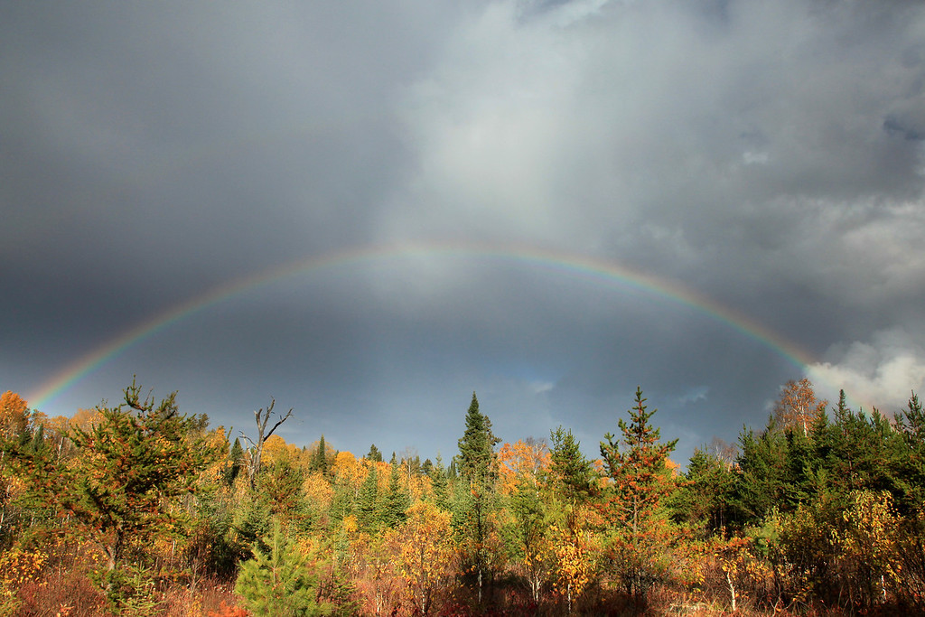 "SUNDAY, OCTOBER 3, 2010<br /> <br /> AUTUMN 1447<br /> <br /> ""Autumn Rainbow""<br /> <br /> Near Greenwood Lake - Cook County, MN. The other day I was driving the back roads from the Gunflint Trail back to Grand Portage. Along the way there were a few rain showers and at one point the sun came out and I saw this beautiful, full rainbow. Luckily I was in a place where the trees weren't as tall so I was able to get a good view of it!<br /> <br /> Camera: Canon EOS 5D Mark II<br /> Lens: Canon EF 24-105mm<br /> Focal length: 24mm<br /> Shutter speed: 1/200<br /> Aperture: f/16<br /> ISO: 400"