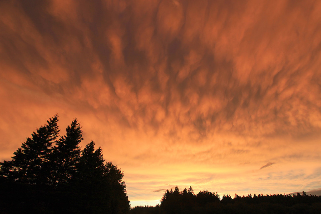"WEDNESDAY, AUGUST 10, 2011<br /> <br /> CLOUDS 1435<br /> <br /> ""Sky Fire""<br /> <br /> Sunset clouds in Grand Portage, MN on August 8, 2011.<br /> <br /> Camera: Canon EOS 5D Mark II<br /> Lens: Canon EF 17-40mm<br /> Focal length: 17mm<br /> Shutter speed: 1/60<br /> Aperture: f/8<br /> ISO: 200"