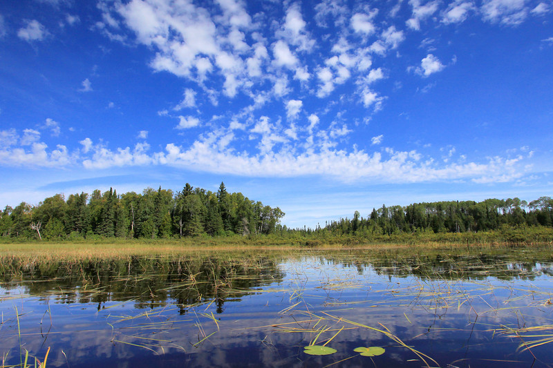 "TUESDAY, AUGUST 30, 2011<br /> <br /> LAKES 1813<br /> <br /> ""Summer on Northern Light Lake""<br /> <br /> I spent a good portion of today kayaking on the Brule River and Northern Light Lake. My hope was to see Moose, but that did not happen. I did, however, see two Bald Eagles, a Kingfisher and several ducks. It was a beautiful day to be on the water!<br /> <br /> Camera: Canon EOS 5D Mark II<br /> Lens: Canon EF 17-40mm<br /> Focal length: 17mm<br /> Shutter speed: 1/640<br /> Aperture: f/16<br /> ISO: 800"