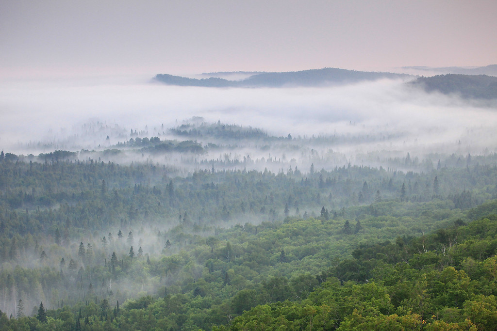 "SUNDAY, JULY 10, 2011<br /> <br /> FOREST 9700<br /> <br /> ""Fog in the Sleepy Hollow Valley""<br /> <br /> This photo was taken from one of the local fire towers last night just before sunset. It had rained all day and as evening wore on the fog was incredible. An elevated vantage point such as this provided for some spectacular views of the fog as it drifted through the surrounding valleys!<br /> <br /> Camera: Canon EOS 5D Mark II<br /> Lens: Canon EF 100-400mm<br /> Focal length: 100mm<br /> Shutter speed: 1/60<br /> Aperture: f/8<br /> ISO: 800"