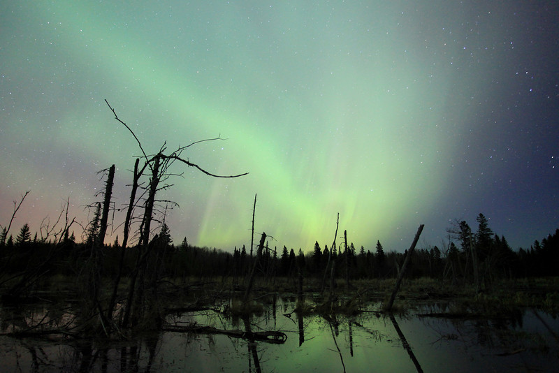 "WEDNESDAY, APRIL 25, 2012<br /> <br /> AURORA 6779<br /> <br /> ""Beaver Pond Aurora""<br /> <br /> Crazy cool, INCREDIBLE northern lights last night!  What made the night totally unforgettable was not only the lights but the music of nature.  Spring peepers and wood frogs were calling all night long and while I was shooting over a lake I could hear a barred owl calling from across the lake.  It was one of the best nights I've ever spent in the woods with my camera!  For the first hour of viewing, the Aurora held the form that you see in the photo above.  To me it sort of resembled the funnel cloud shape of a tornado.  This photo was taken at about 11:00 PM.  A couple of hours later the scene was totally wild as the lights easily filled 75% of the sky and were moving much, much faster than they were when the above photo was made.  The lights shown in the photo above were hardly moving at all.  The variety that exists in the lights of the Aurora never ceases to amaze me!<br /> <br /> Camera: Canon EOS 5D Mark II<br /> Lens: Canon EF 17-40mm<br /> Focal length: 17mm<br /> Shutter speed: 30 seconds<br /> Aperture: f/4<br /> ISO: 2500"