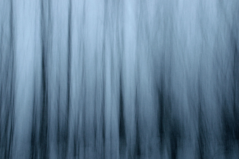"FRIDAY, AUGUST 31, 2012<br /> <br /> ABSTRACT 146<br /> <br /> ""Phantom Birch Trees II""<br /> <br /> Here is another interpretation of the same scene. This is the same stand of birch trees and again a 5 second exposure, but this time I panned the camera vertically during the exposure. I also chose not to convert this image to black and white however I did desaturate it quite a bit, removing at least 50% of the color that was in the original exposure. The original image was way too blue, and I liked the feel of this one much more with the subtle color. <br /> <br /> Camera: Canon EOS Digital Rebel<br /> Lens: Canon EF-S 18-55mm<br /> Focal length: 18mm<br /> Shutter speed: 5 seconds<br /> Aperture: f/4.5<br /> ISO: 200"