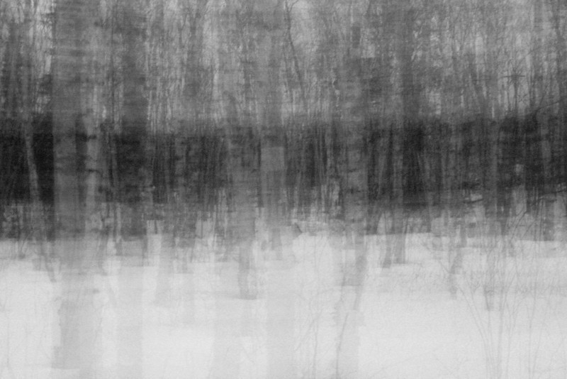 """FRIDAY, AUGUST 31, 2012<br /> <br /> ABSTRACT 144<br /> <br /> """"Phantom Birch Trees""""<br /> <br /> Here is an oldie but (in my opinion, anyway) a goodie. One of my very first attempts at using a slow shutter speed combined with a panning motion of the camera to create an abstract image. This is a stand of birch trees in late winter, taken after sunset just as the darkness was starting to descend on the forest. This was a 5 second exposure, during which I was panning the camera slowly from left to right.<br /> <br /> Camera: Canon EOS Digital Rebel<br /> Lens: Canon EF-S 18-55mm<br /> Focal length: 18mm<br /> Shutter speed: 5 seconds<br /> Aperture: f/4.5<br /> ISO: 200"""