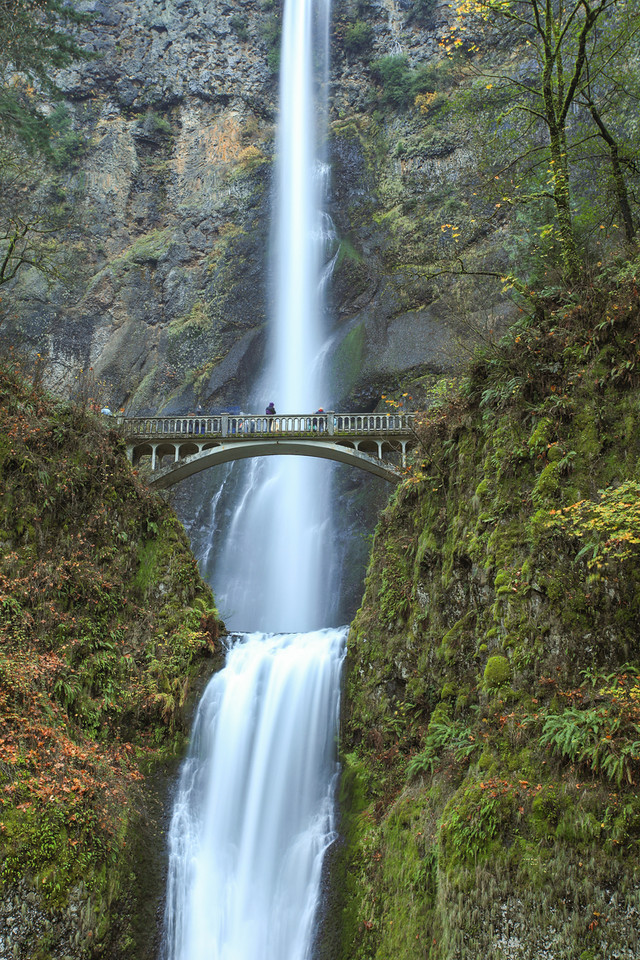 "TUESDAY, NOVEMBER 27, 2012<br /> <br /> OREGON 7929<br /> <br /> ""Multnomah Falls""<br /> <br /> Columbia River Gorge National Scenic Area - Oregon<br /> <br /> Multnomah, more than any other waterfall in the Columbia River Gorge, is arguably the ""must-see"" waterfall in that area.  It is also one of the easiest ones to see, with excellent access just off the roadway.  We arrived late in the day but still managed to squeeze off a few shots before it got too dark to see the falls.  This was a 6 second exposure taken from near the base of the falls.  <br /> <br /> Camera: Canon EOS 5D Mark II<br /> Lens: Canon EF 17-40mm<br /> Focal length: 40mm<br /> Shutter speed: 6 seconds<br /> Aperture: f/10<br /> ISO: 50"
