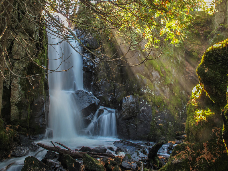 """FRIDAY, OCTOBER 18, 2013<br /> <br /> RIVERS 8095<br /> <br /> """"Sun Rays at Stairway Falls""""<br /> <br /> Earlier this week Jessica and I did some hiking within the Boundary Waters Canoe Area Wilderness just off the Gunflint Trail in northeast Minnesota.  We did the Caribou Rock Trail all the way to where it intersects with the Border Route Trail at Rose Lake.  This is NOT an easy hike!  We were prepared for a tough hike, as all the guide books say it is a difficult hike and takes much more time than you would expect.  Even so, the trail was much more rugged than we were expecting!  You are pretty much always hiking either uphill or downhill and the hills are often very steep.  So steep, in fact, that this time of year with the majority of the leaves already blanketing the ground, it can be very difficult to tell where the trail goes.  Several of the slopes along the trail were more like goat trails than people trails.  It's hard to believe that a trail was constructed through such demanding terrain.  <br /> <br /> The difficulty is worth it, though, as the sights along the trail are spectacular.  You pass by 4 different lakes, 2 just outside the BWCA (West Bearskin and Moss) on the first half of the hike and 2 within the boundary waters (Duncan and Rose) on the second half.  There are magnificent views of each lake as you hike past them on the surrounding hilltops.  The last overlook of the hike is arguably the most dramatic as you sit on an open rock ledge high above Rose Lake overlooking the vast U.S./Canada border country that surrounds you.  <br /> <br /> The final reward of the hike is a visit to Stairway Falls on Stairway Portage, which connects Duncan Lake to Rose Lake.  Stairway Falls is located within a beautiful rocky gorge lined with moss and cedar trees.  We were there at just the right time of day to see some amazing sun rays penetrating down into the gorge from above the waterfall.  According to the guide book, the hike was 4 miles from the parking are"""